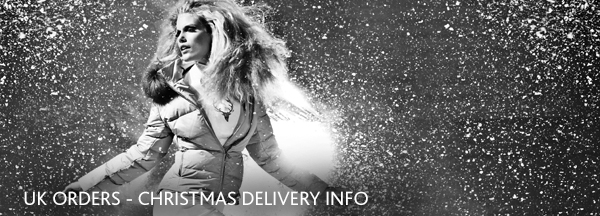 Christmas Delivery info