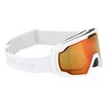 Dragon Alliance Ski Goggles