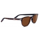 Serengeti Andrea Dark Tortoise With Polarized Drivers Lens