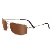 Serengeti Le Mans Treviso Satin Gold With Polarized Drivers Gold