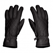 Goldbergh Nishi Womens Leather Ski Gloves in Black